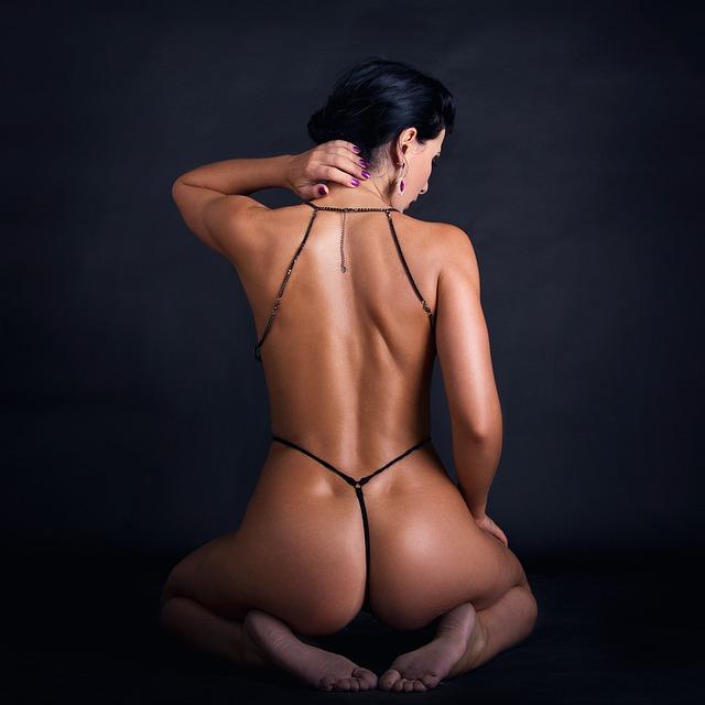 ass-5011910_640