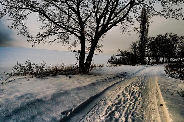 Stopy pneumatík v snehu na zasneženej ceste.jpg